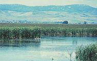 Bear Lake National Wildlife Refuge in the spring.