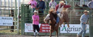 Bear Lake County Fair Rodeo in Montpelier Idaho