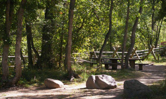 Albert Moser Campground