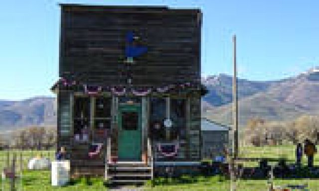 Blue Goose Country Store