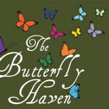 The Butterfly Haven