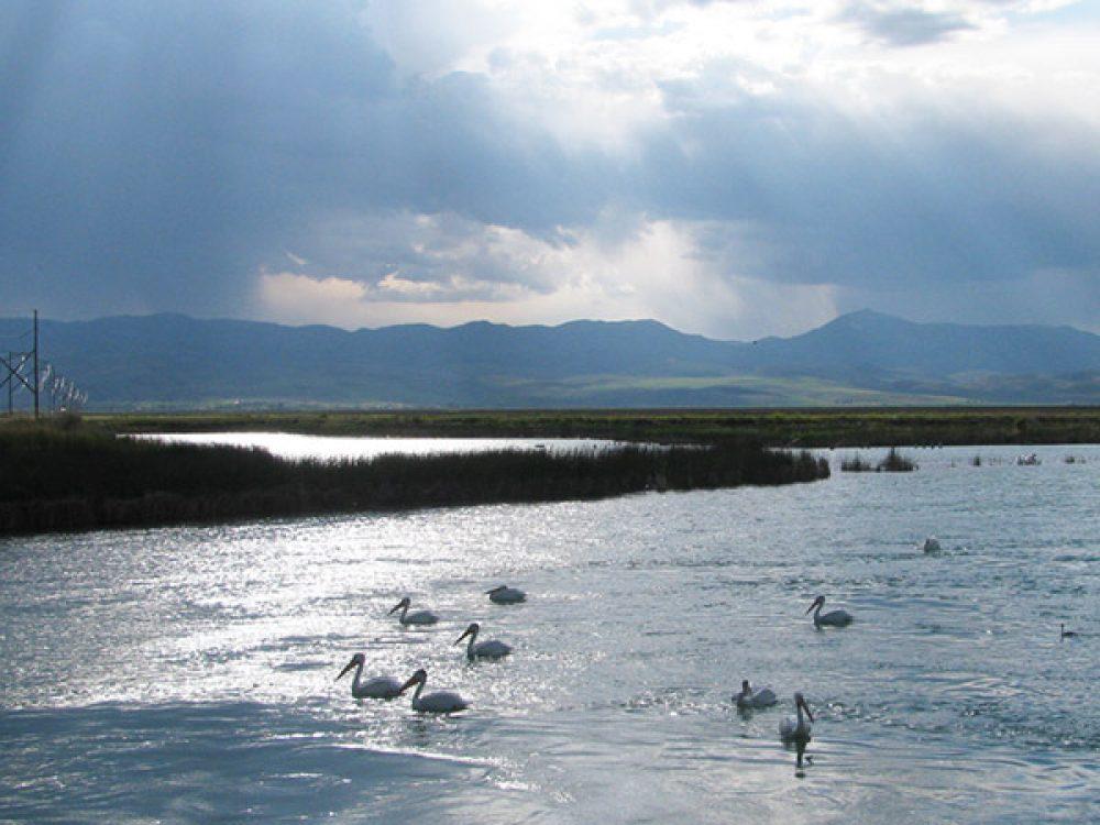 Bear Lake National Wildlife Refuge - Southeast Idaho