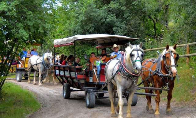 Baker Ranch Wagon Rides & Cross Country Skiing
