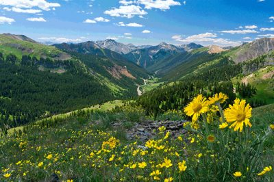 Caribou – Targhee National Forest