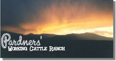 Pardners' Working Cattle Ranch Lodging