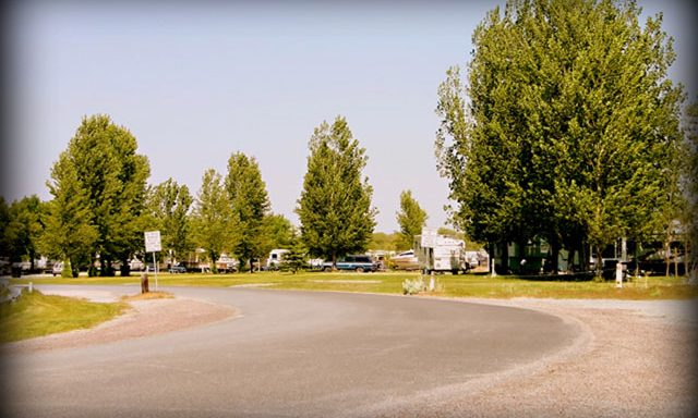 Willow Bay Recreation Area Campground