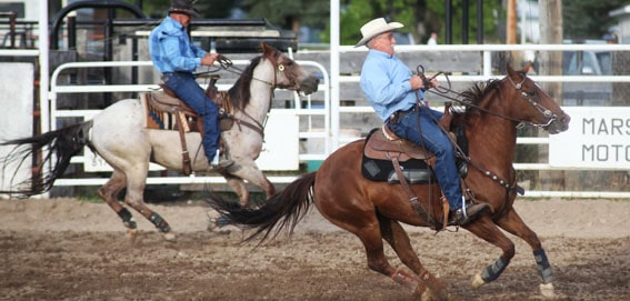 Bannock County Fair and Rodeo in Downey Idaho