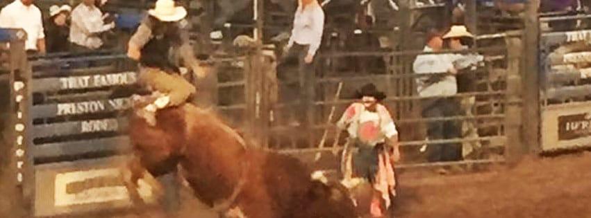 Franklin Country Fair Bull Bonanza in Preston Idaho