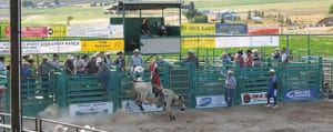 Lava Lions Bulls Only Rodeo in Lava Hot Springs Idaho
