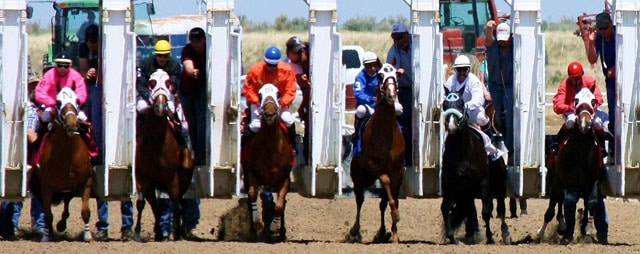 Pocatello Downs Flat Track Horse Races