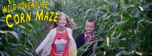 Wild Adventure Corn Maze in Blackfoot Idaho
